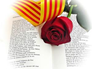llibre-rosa-senyera