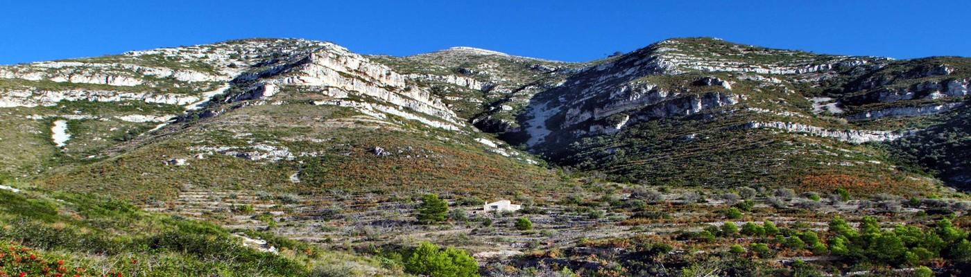 Ajuntament d'Ulldecona