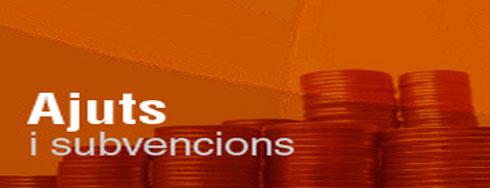 ajuts_i_subvencions